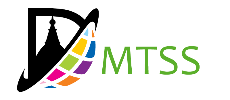 DMTSS logo