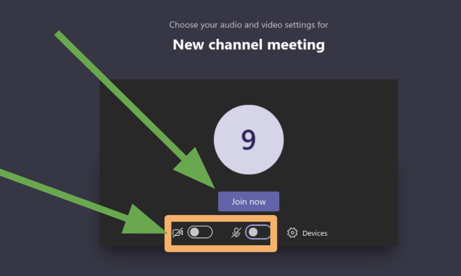 Enable/disable your camera or microphone before entering the live meeting.